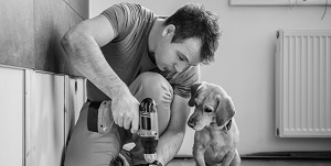 man doing home renovations alongside his dog
